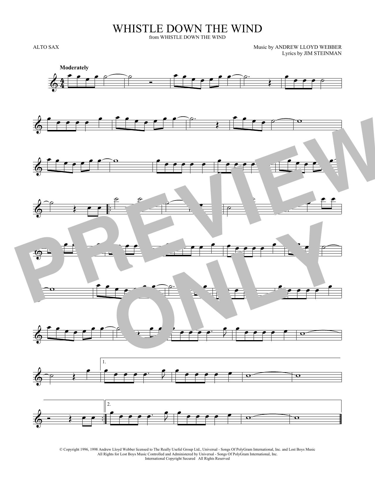 Whistle Down The Wind (Alto Sax Solo)