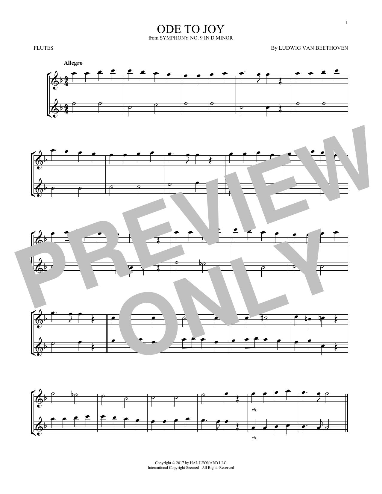 Ode To Joy (Flute Duet)