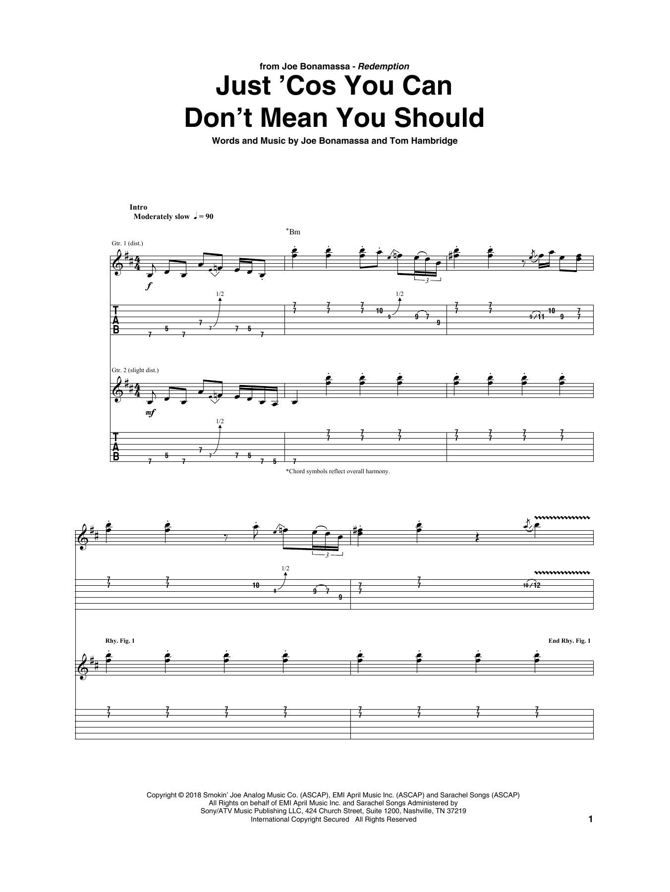 Just 'Cos You Can Don't Mean You Should (Guitar Tab)