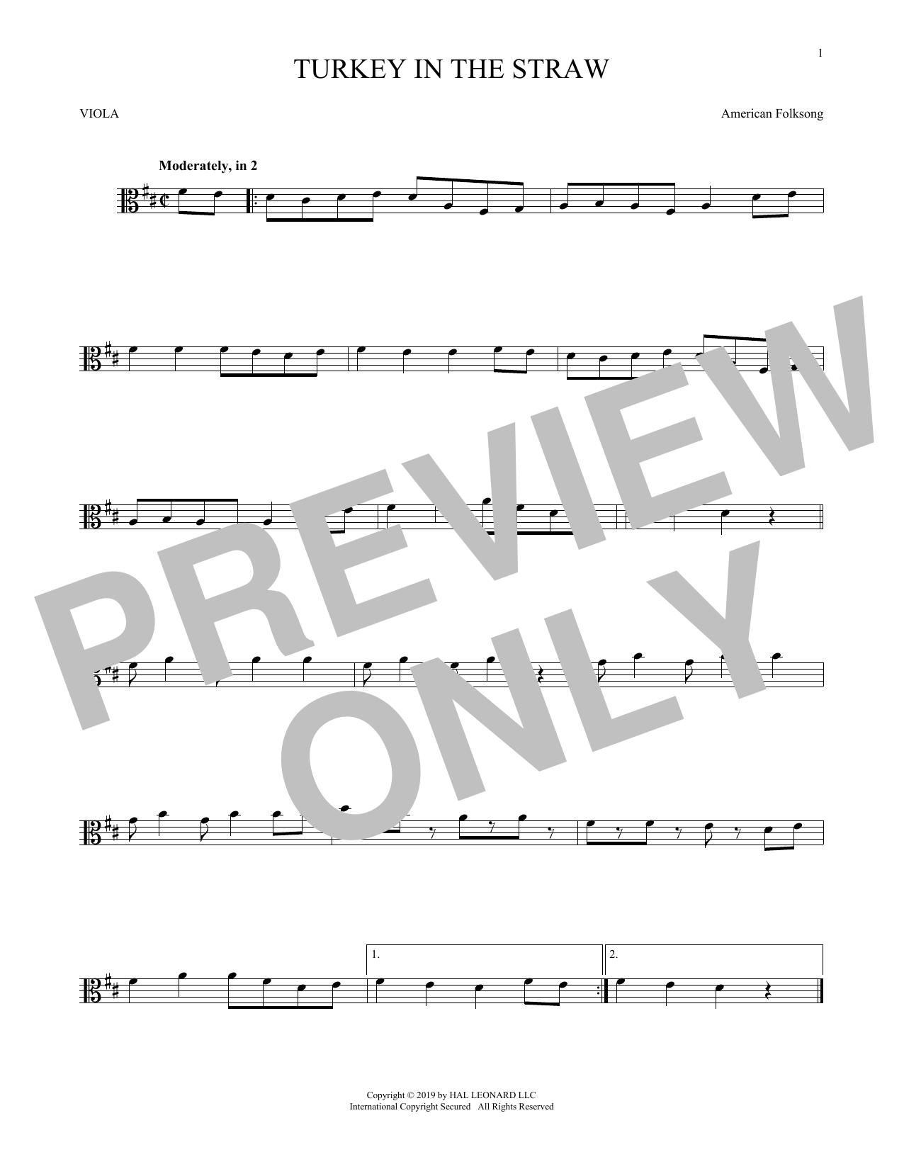 Turkey In The Straw (Viola Solo)