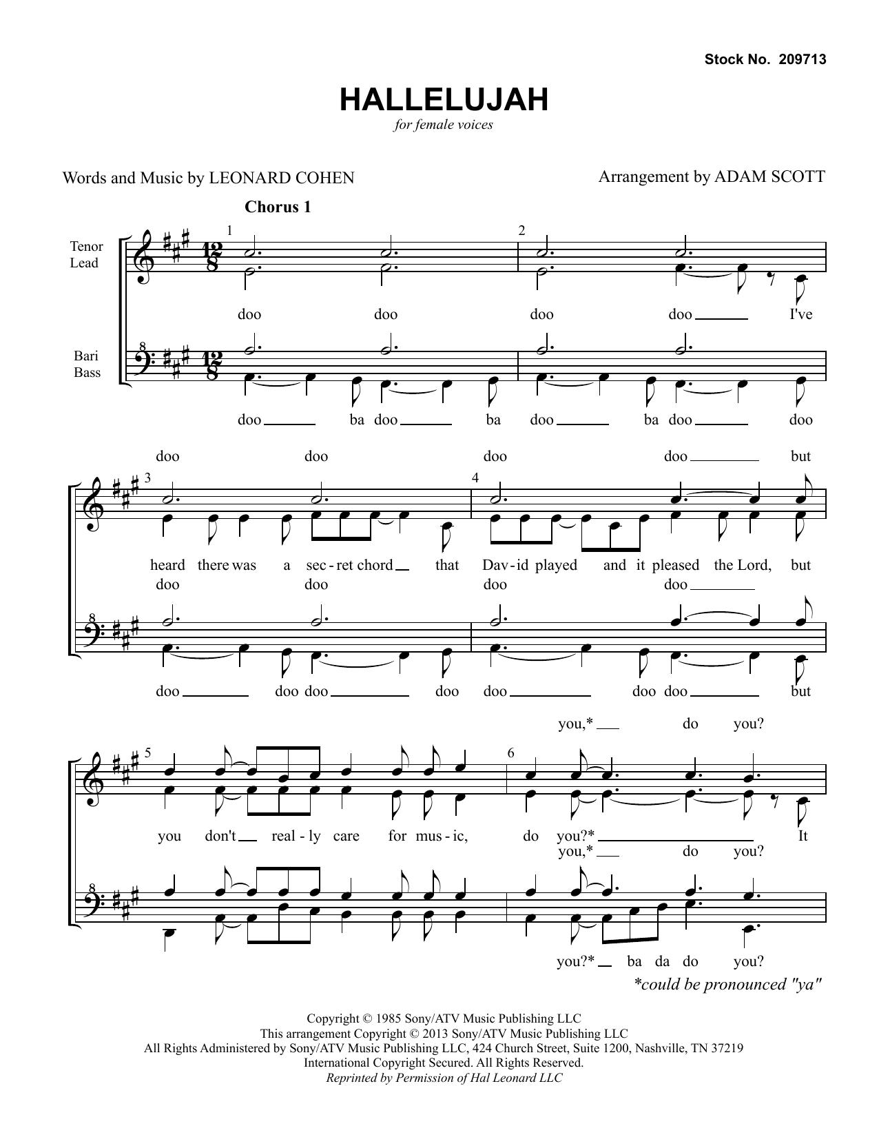 Hallelujah (arr. Adam Scott) Partition Digitale