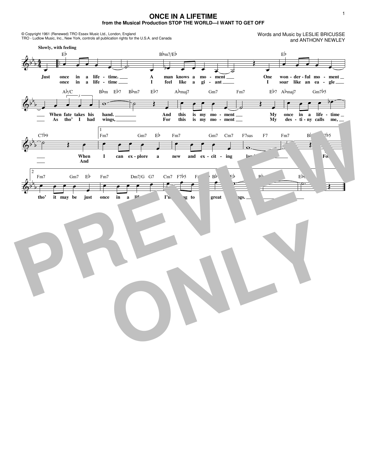 Once In A Lifetime (Lead Sheet / Fake Book)
