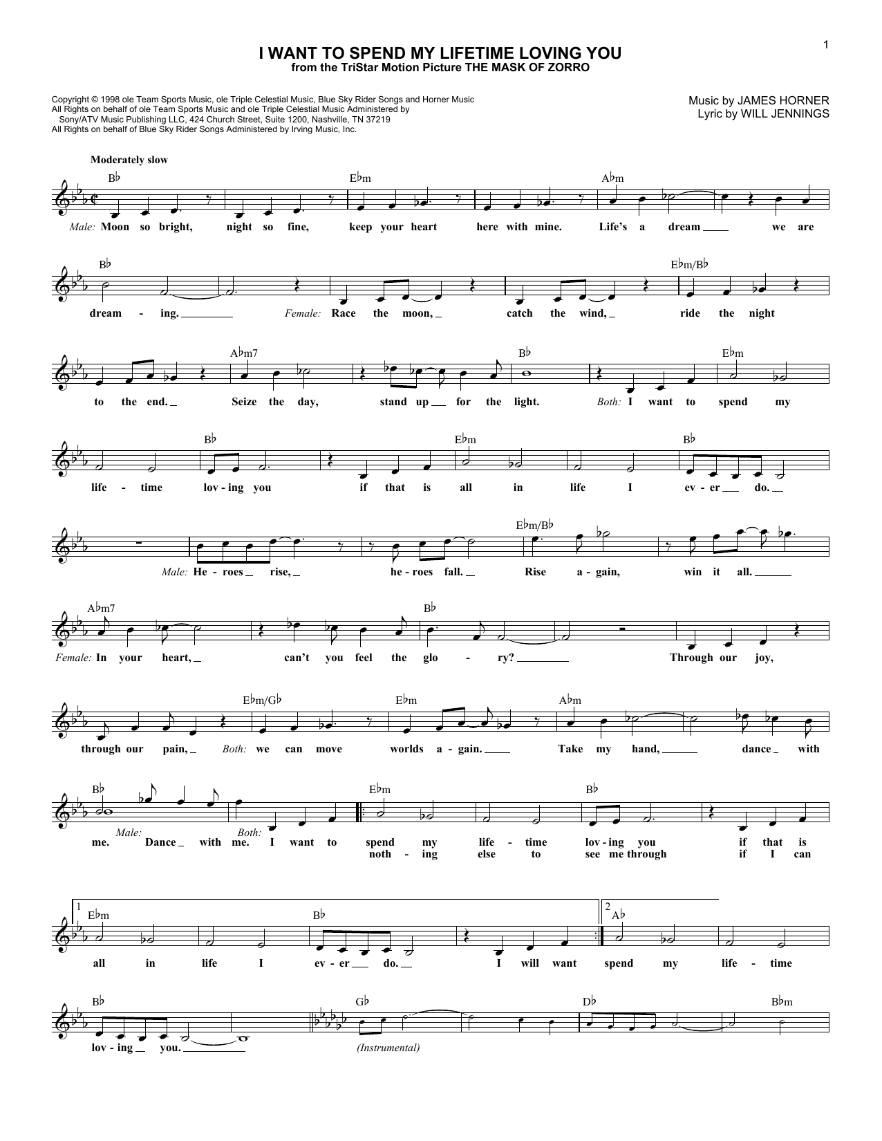 I Want To Spend My Lifetime Loving You (Lead Sheet / Fake Book)