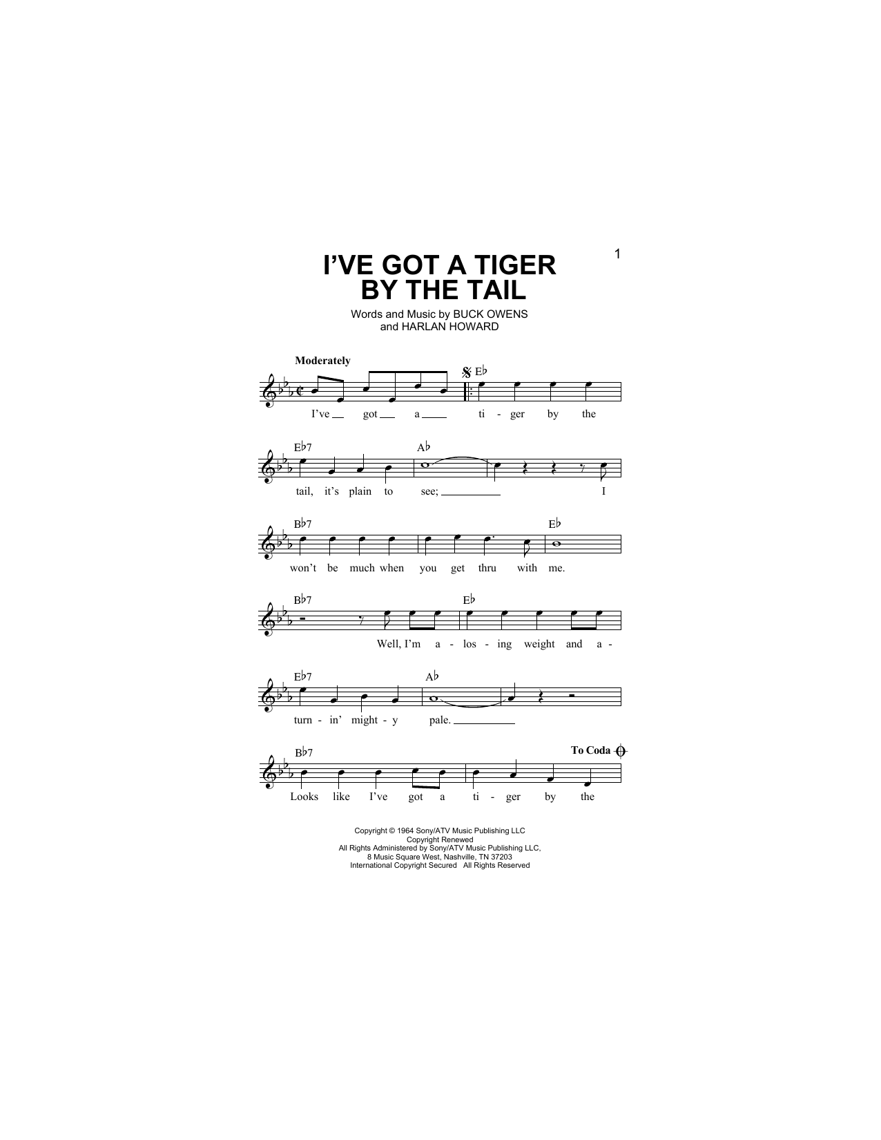 I've Got A Tiger By The Tail (Lead Sheet / Fake Book)