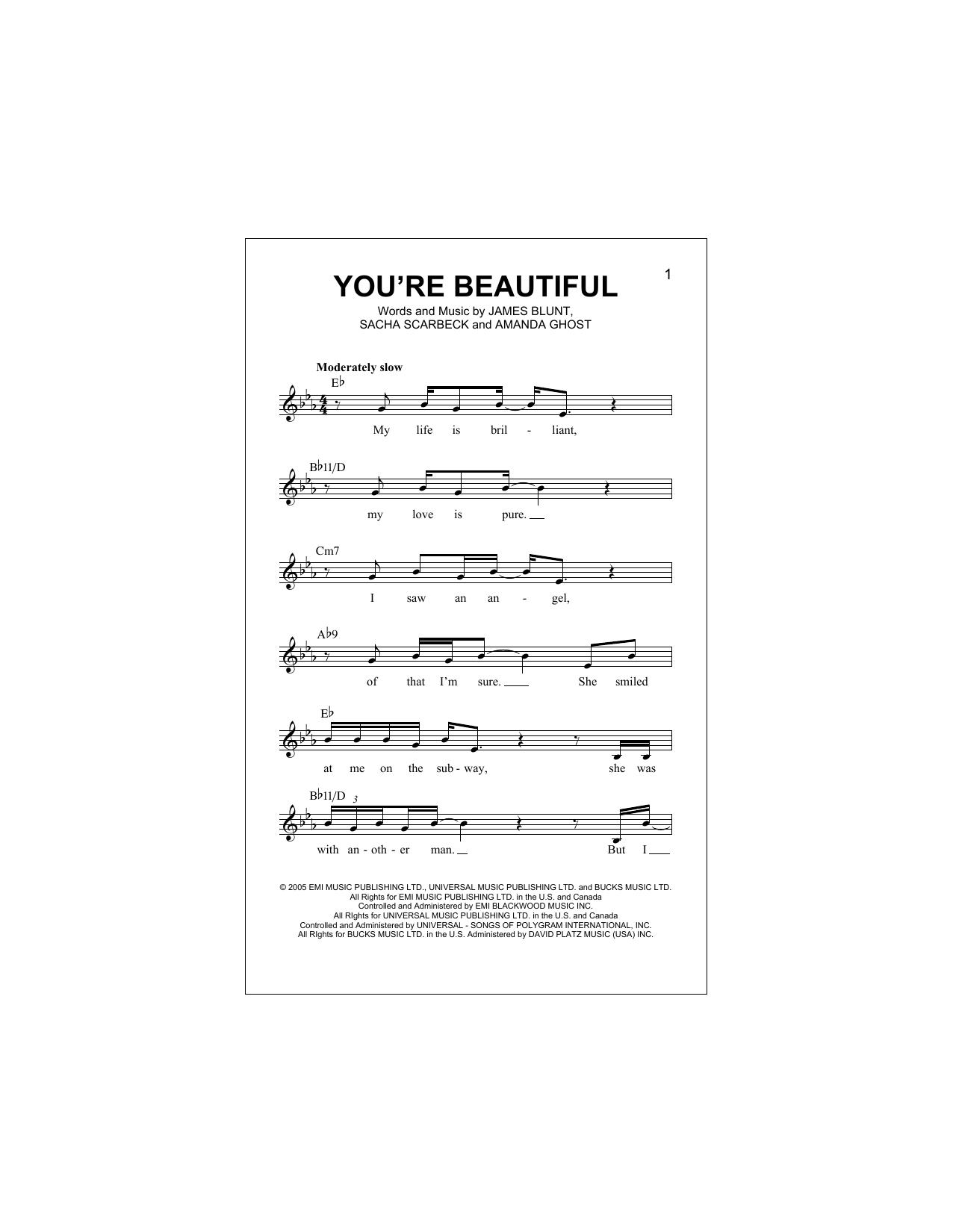 You're Beautiful (Lead Sheet / Fake Book)