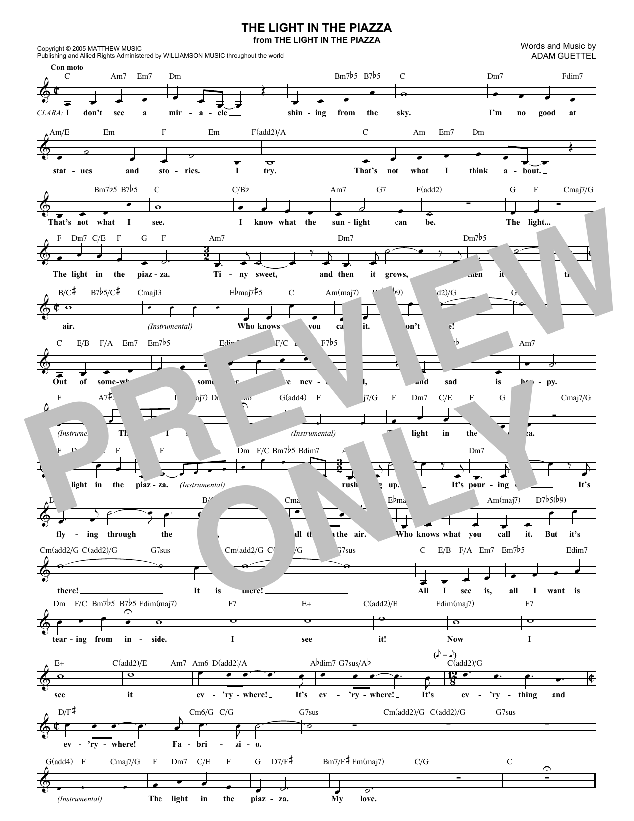 The Light In The Piazza (Lead Sheet / Fake Book)