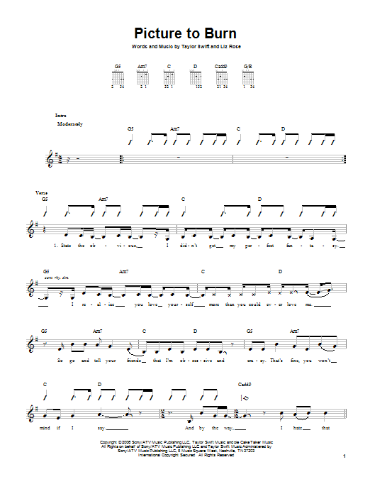 Picture To Burn Sheet Music