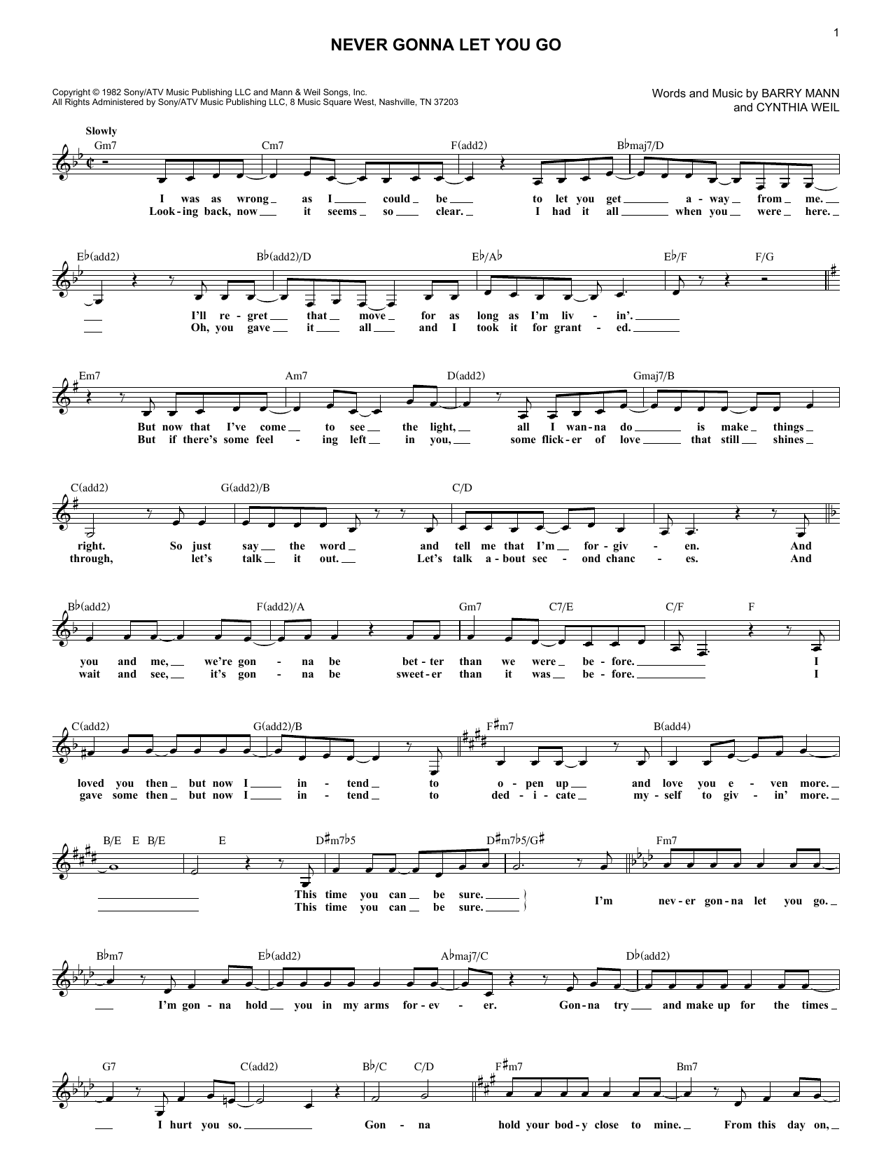 Never Gonna Let You Go (Lead Sheet / Fake Book)