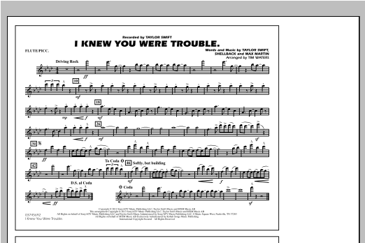 I Knew You Were Trouble - Flute/Piccolo Sheet Music