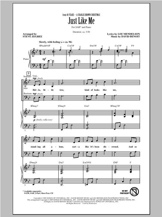 Just Like Me (arr. Steve Zegree) Sheet Music