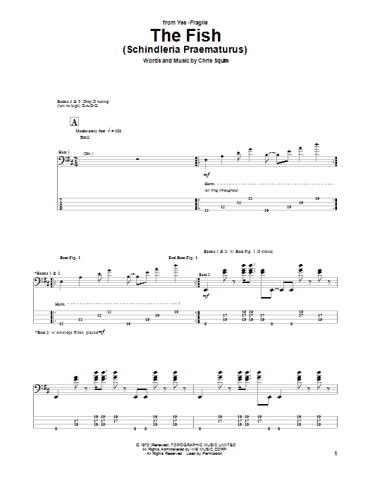 The Fish (Schindleria Praematurus) (Bass Guitar Tab)
