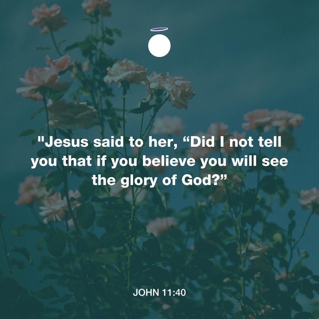 Hallow Bible Verse - John 11:40