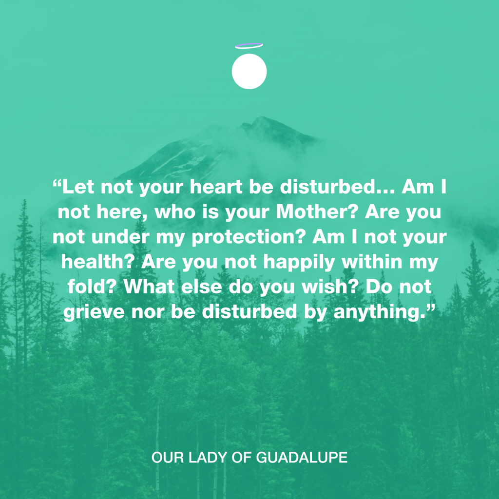 Hallow Daily Quote - Our Lady of Guadalupe