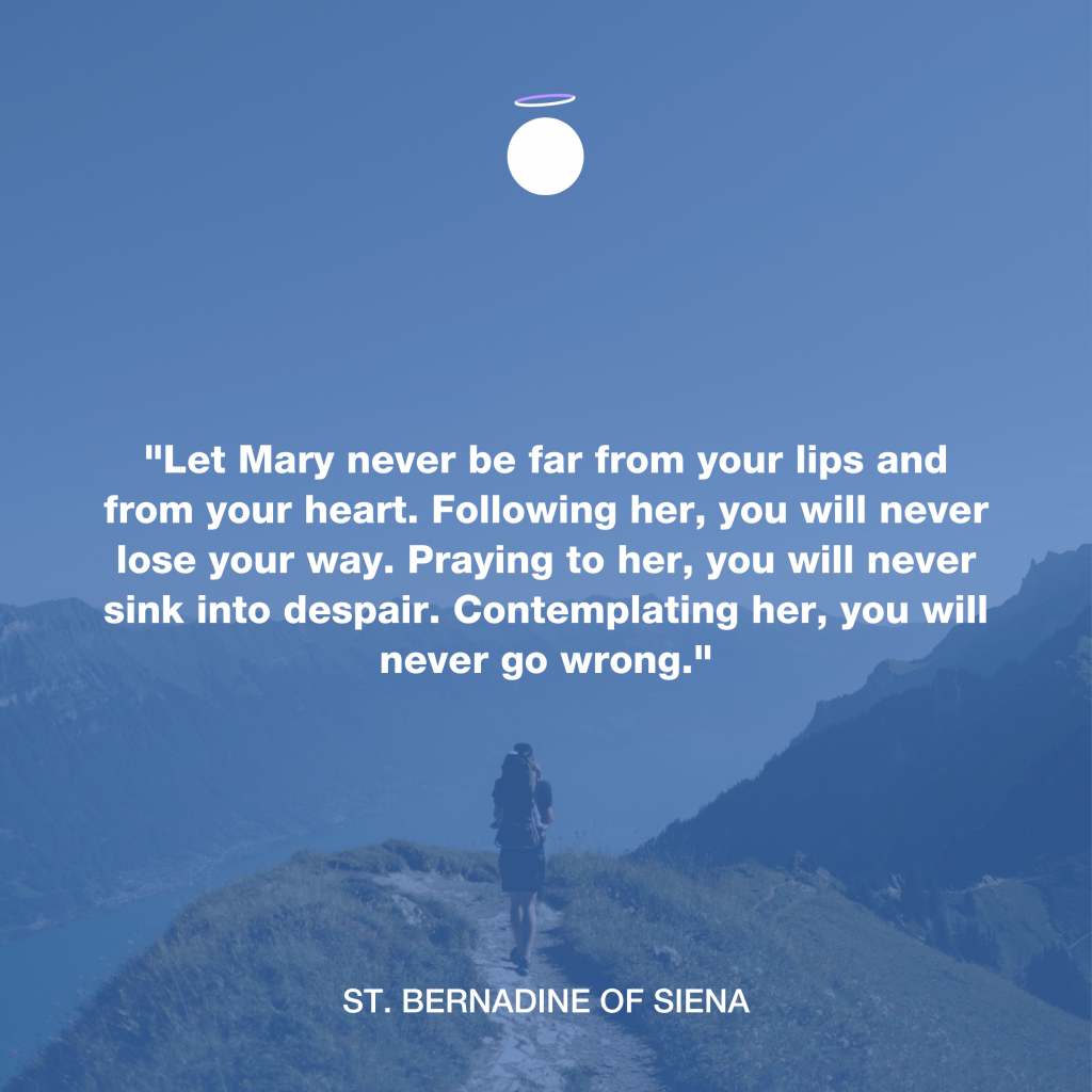 Hallow Daily Quote - Mary Meditation