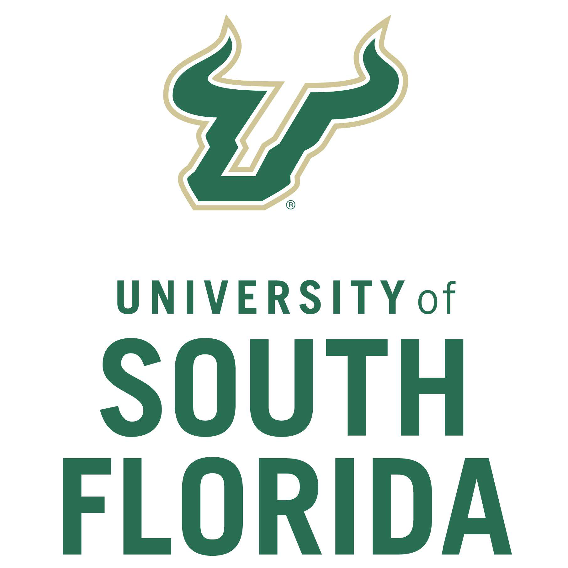 University of South Florida St.Petersburg