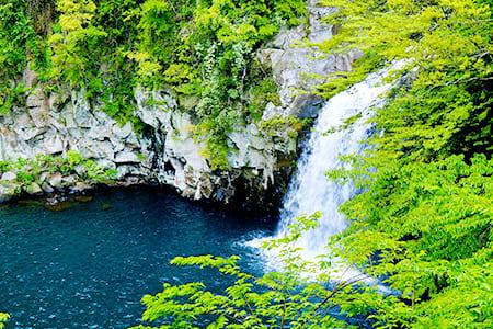 海陸雙拼濟州島5日遊升等全程五花酒店虎航