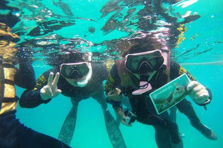 【澎湖山水沙滩生态之旅】浮潜体验+潮间带探险(招待道地澎湖面线)