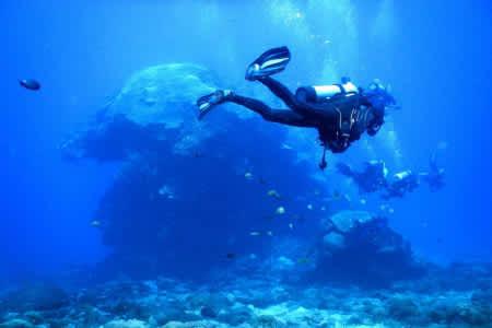 【PADI潛水執照】 開放水域 考取潛水執照