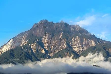 【神山公園2日遊】漫步神山保齡溫泉樹頂吊橋牧牛場
