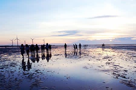 Gaomei Wetland Taichung Half Day Tour