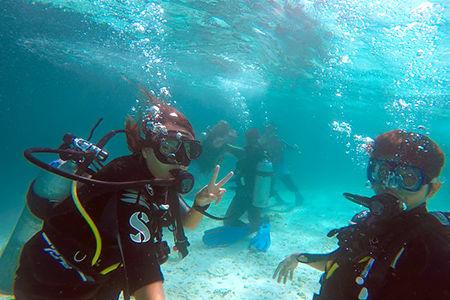 【馬爾地夫Maafushi深潛】半日體驗行程(無經驗可參加)