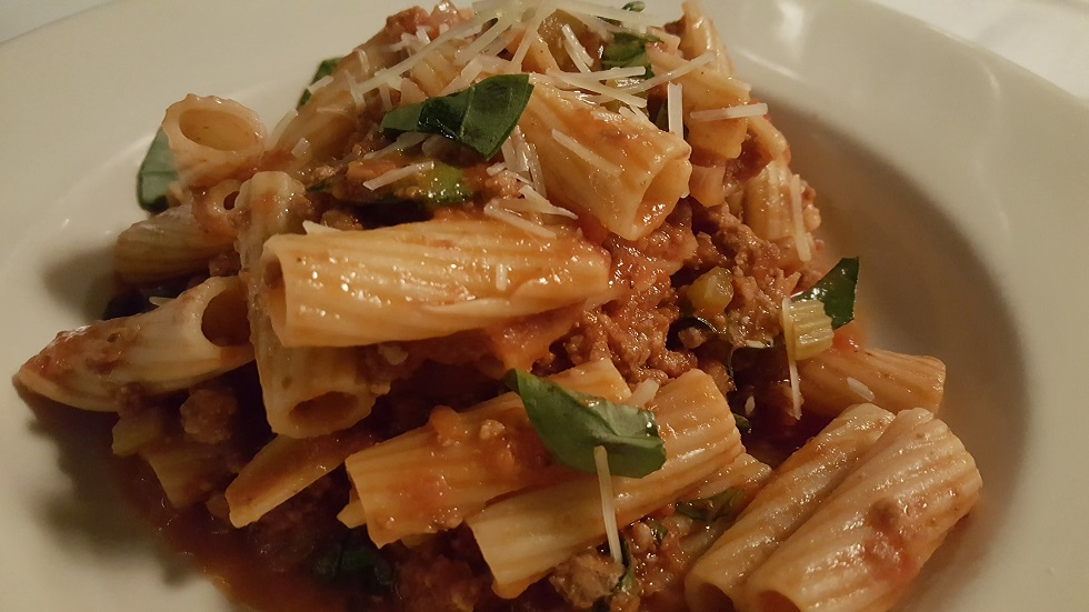 WRW Little Savannah Bolognese up close