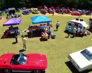 Classic Cars in Green Field