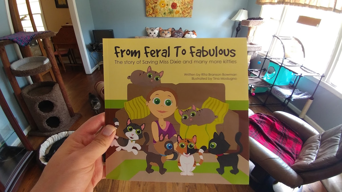 From Feral To Fabulous book by Rita Bowman