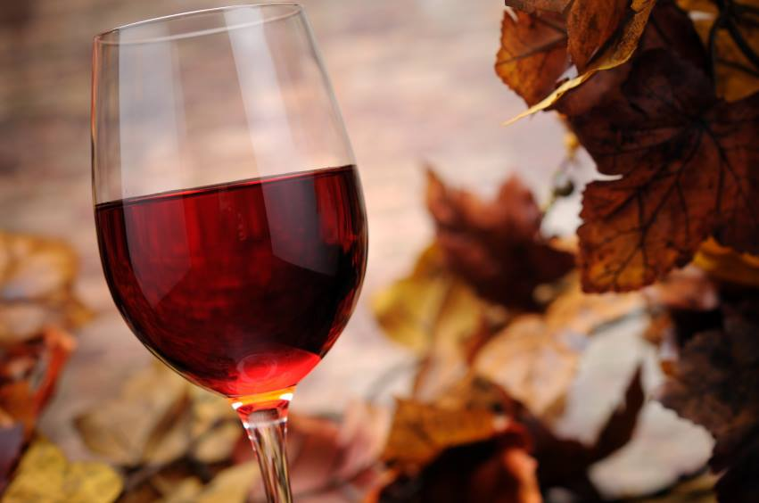 Red Wine and Fall Leaves