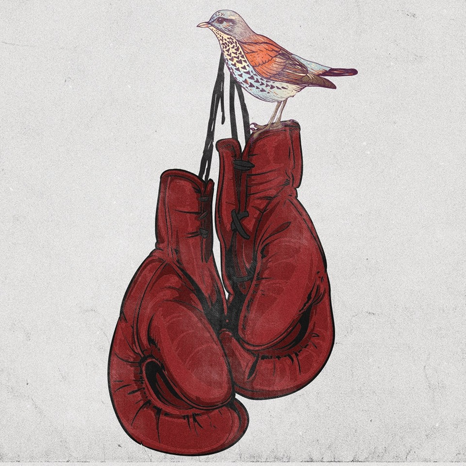 Arc Stories Fight or Flight Bird on Boxing Gloves