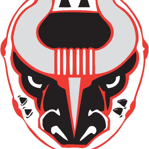 Birmingham Bulls Hockey Logo