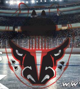 Bham Bulls Hockey