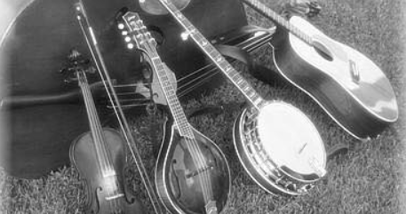 Bluegrass Instruments