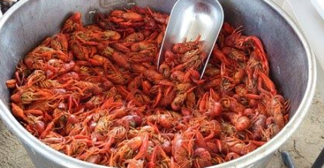 Delta Blues Crawfish Boil