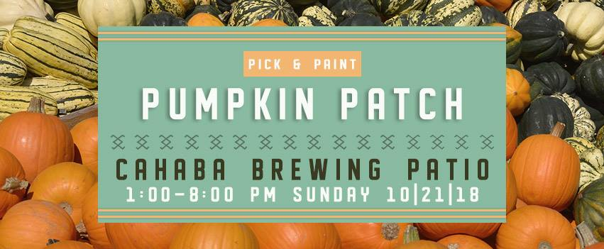 Pick and Paint Pumpkin Patch