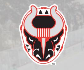 Bulls Hockey