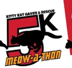 Kitty Kat Haven 5k
