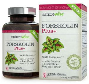 natrurewise forskolin supplement