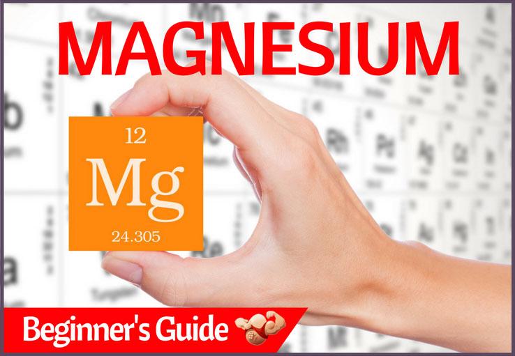 magnesium guide
