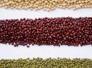 beans mg