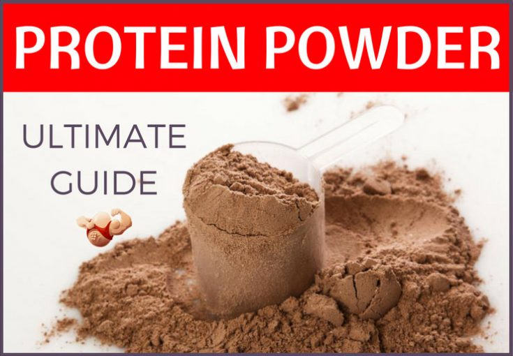 protein powder guide