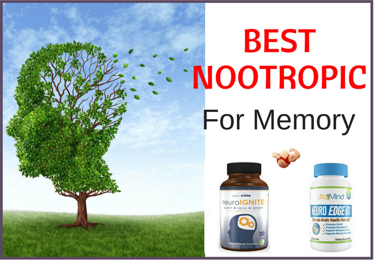 best nootropic for memory