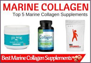 best marine collagen supplements