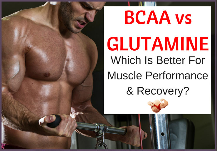 bcaa versus glutamine