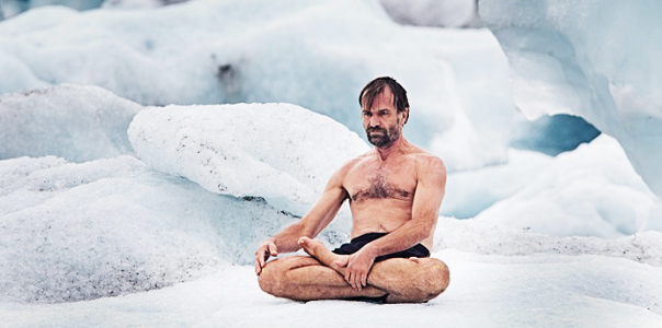 wim, hof sitting in ice and snow