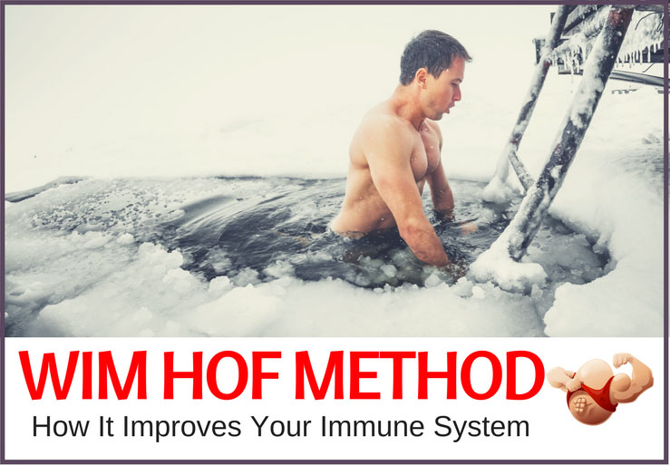 wim hof and immune system