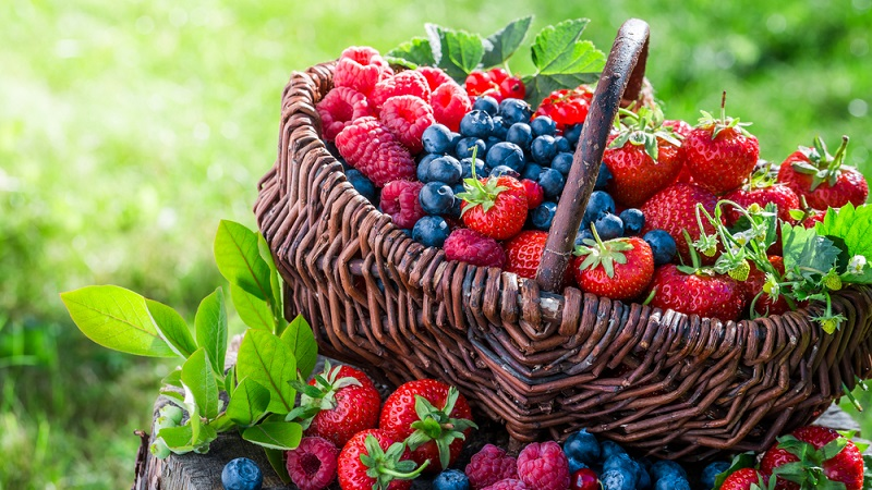 selection of berries in a basket
