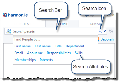 The search bar.