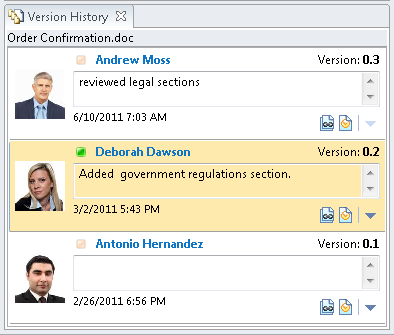 The Version History dialog.