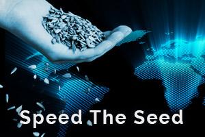 speed seed mid